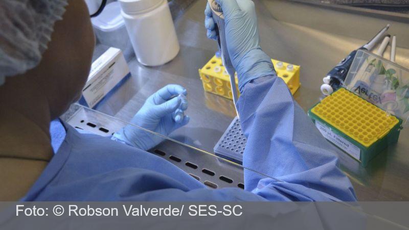 OMS fará testes para avaliar outros possíveis tratamentos da covid-19