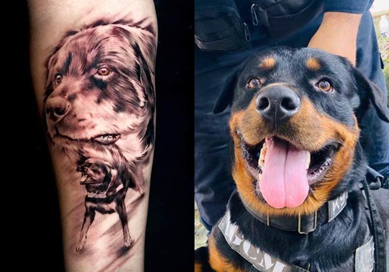 Guarda tatua rosto do cão que o salvou de tiro de jovem: gratidão