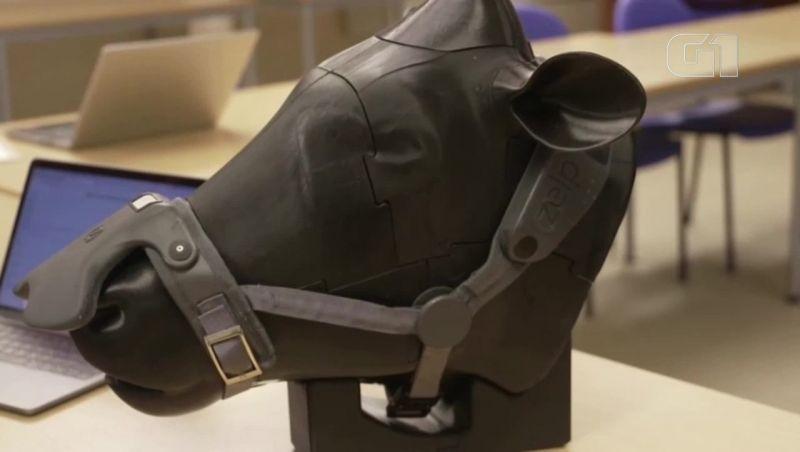 Máscara capta gás metano do arroto das vacas na Inglaterra