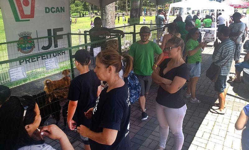 Canil Municipal de JF doa nove animais no último evento do ano