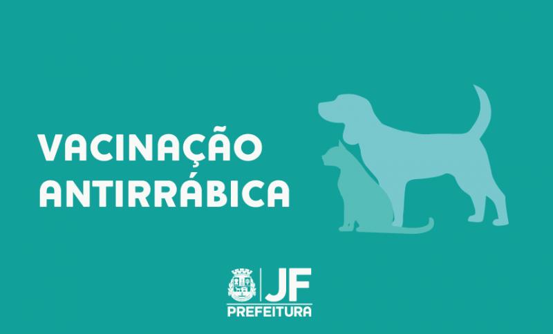 Campanha de vacinação antirrábica começa no dia 15 na Zona Rural de JF