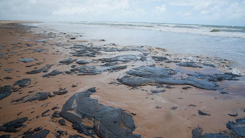 O que se sabe sobre a possibilidade de banho nas praias afetadas pelo óleo no Nordeste