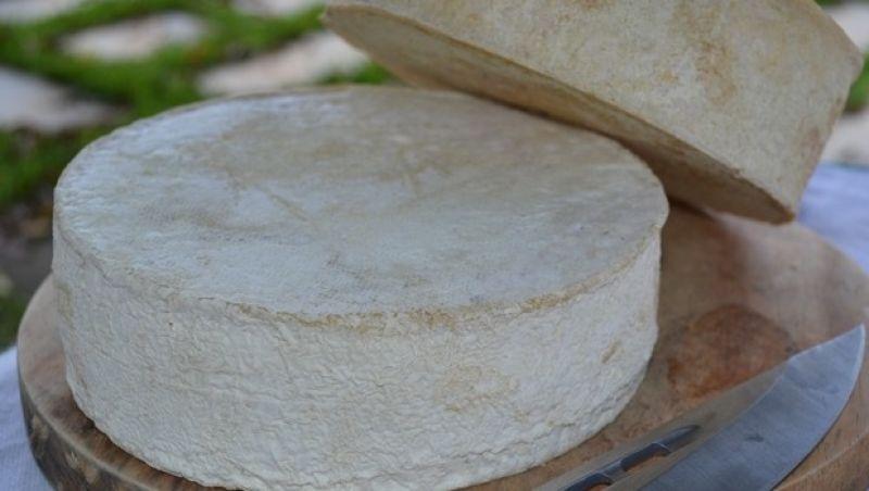 Queijo artesanal da Canastra surpreende especialistas na Itália