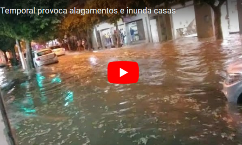 Temporal provoca alagamentos e inunda casas na Zona da Mata