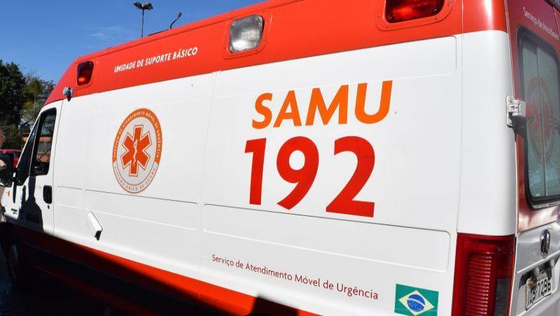 Motorista morre após atropelar búfalo na BR-267 em Bom Jardim de Minas