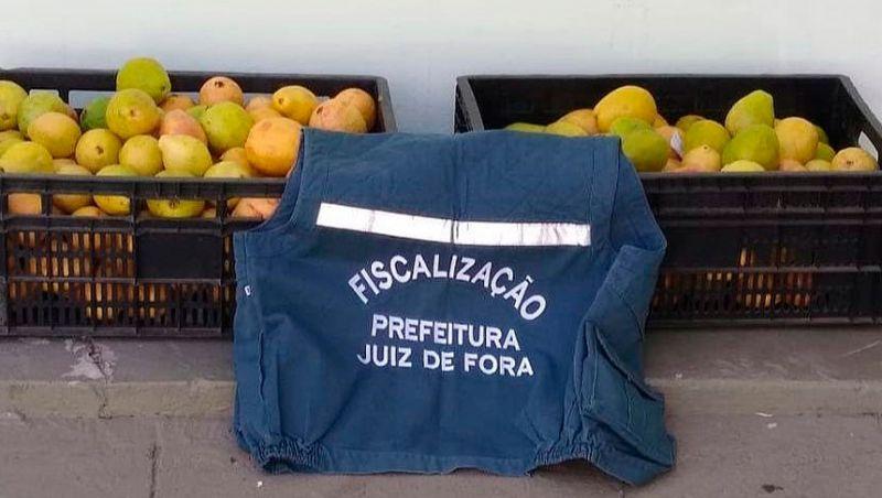 Frutas apreendidas pela fiscalização são doadas para entidades beneficentes de JF