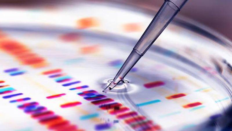 Nova tecnologia corrige erros do DNA para curar 89% das doenças