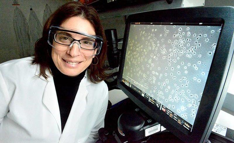 Alzheimer: cientistas diminuem inflamação no cérebro e revertem demência