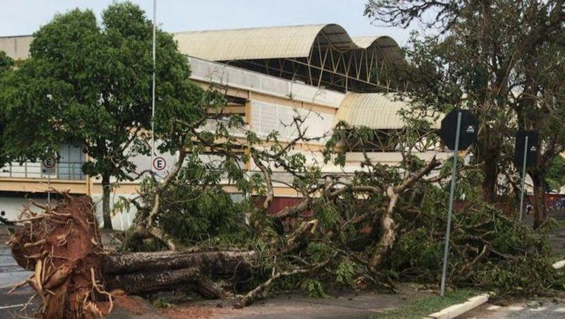 Em situação de emergência, Viçosa vai receber quase R$ 45 mil antecipados do Estado
