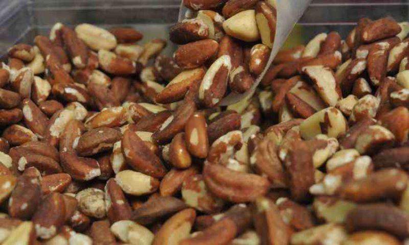 Estudos americanos detalham os benefícios da ingestão regular de oleaginosas