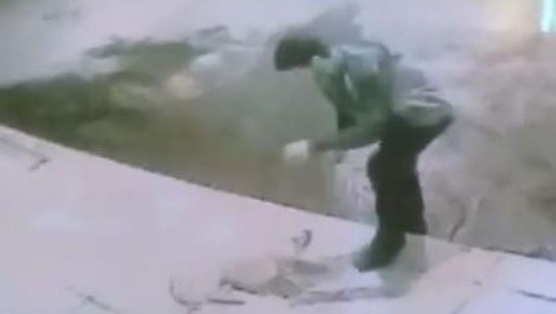 Homem esfaqueia cachorro depois de fingir que vai brincar com ele em Minas Gerais; vídeo