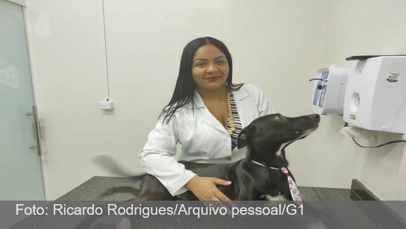 Cão ferido que entrou sozinho em clínica passa bem após 1ª quimioterapia