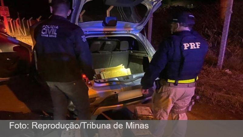 Polícias Civil e Rodoviária Federal apreendem mais de 150 tabletes de maconha em Juiz de Fora