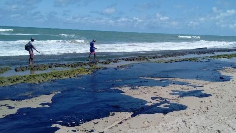 Manchas de óleo: desastre afeta reservas, turismo e comunidades pesqueiras