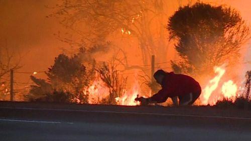 Incêndios na Califórnia impõem esforços às produções de filmes e programas de TV