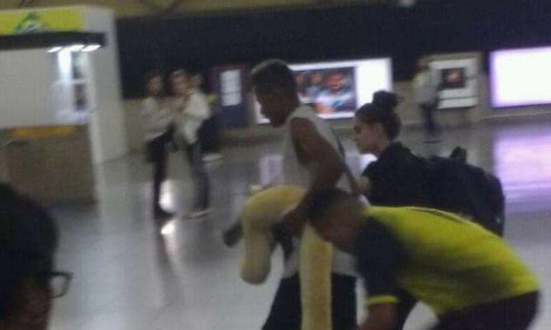 Cobra é transportada em vagão de metrô e choca passageiros na estação Tatuapé em SP