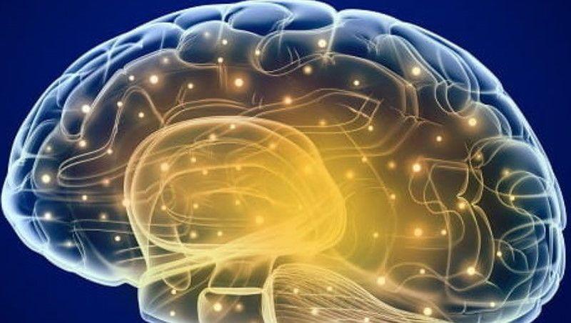 Pode ser aprovado 1º medicamento contra Alzheimer após melhora em pacientes