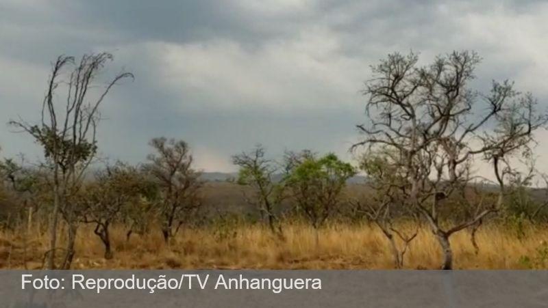 Fogo na Chapada dos Veadeiros é extinto após 2 semanas e 30 mil hectares destruídos