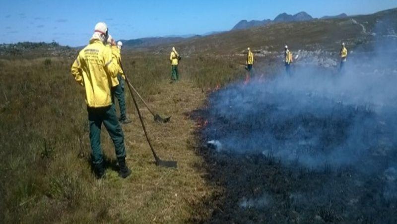 Manejo do fogo é aprovado como técnica contra incêndios florestais em Minas