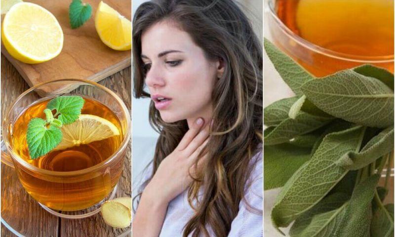 Conheça 5 remédios naturais para a congestão no peito