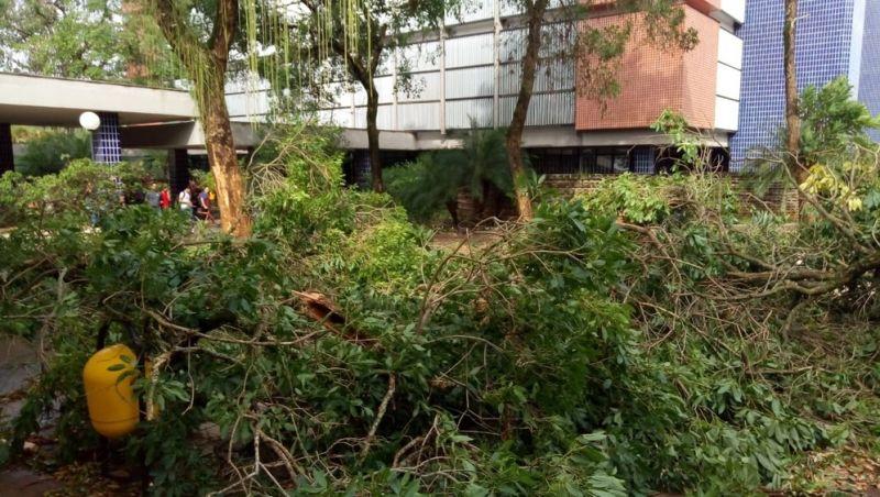 MEC libera R$ 5 milhões para a UFV após chuva destruir parte do campus e laboratórios