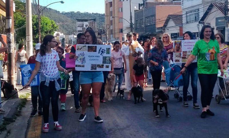 """""""Cãominhada"""" reúne dezenas de animais e tutores na Avenida Rui Barbosa em JF"""