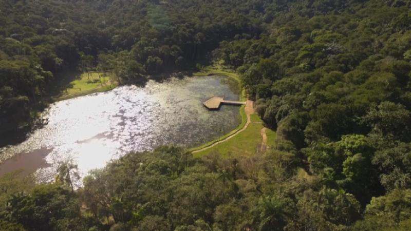 Refúgio natural: UFJF abre Jardim Botânico nesta sexta, 12