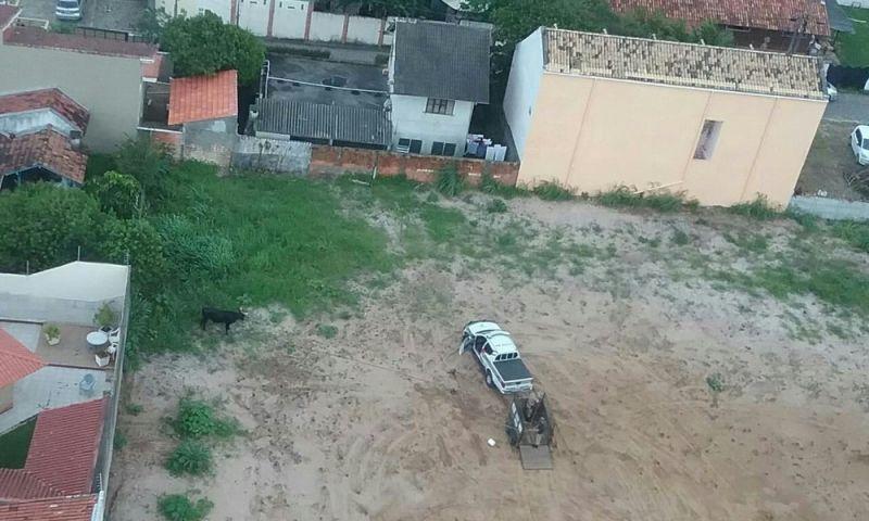 PM flagra farra do boi em Florianópolis e resgata animal