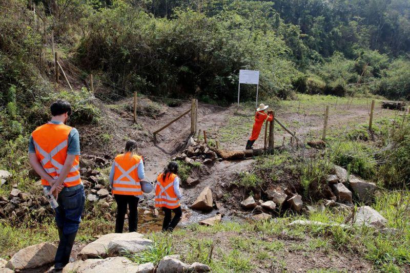 Dos afluentes ao Rio Doce: ações visam revitalização após tragédia