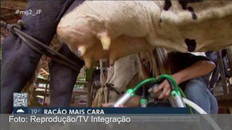 Aumento dos custos da produção preocupa produtores de leite em Juiz de Fora