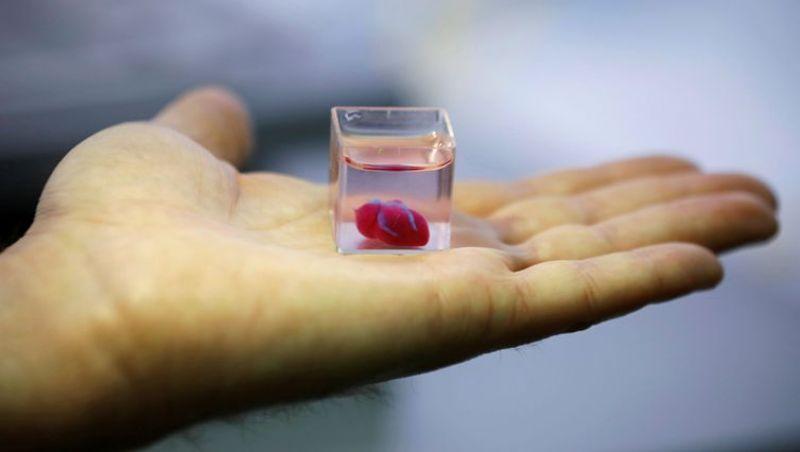 Coração é impresso em 3D em Israel a partir de tecido humano