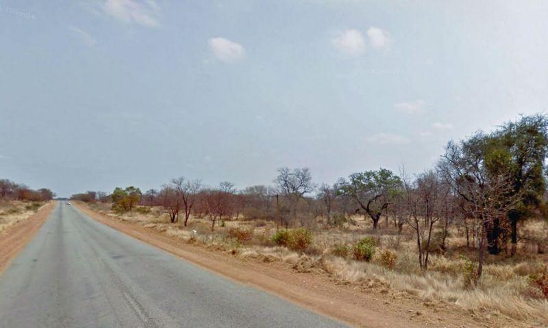 Leões devoram suspeito de ser caçador e deixam só a cabeça na África do Sul