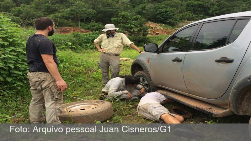 Pneu furado em estrada do PI leva a descoberta de réptil inédito da Era Paleozoica